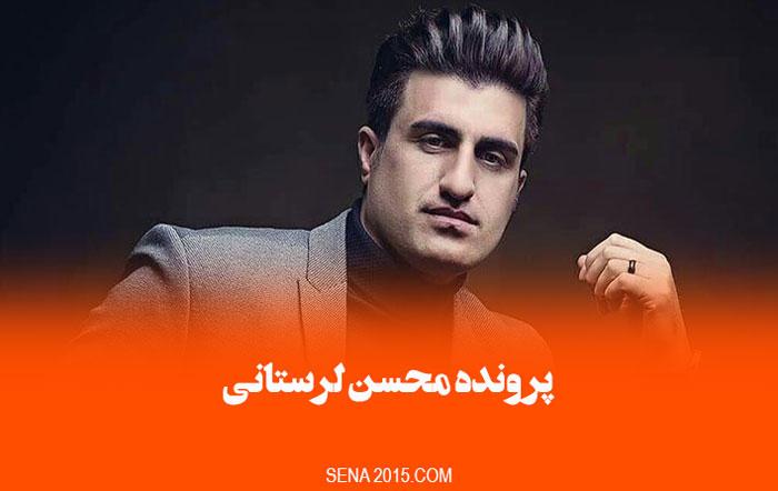 نتیجه پرونده محسن لرستانی به کجا رسید؟ (حبس یا اعدام)
