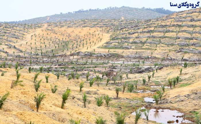انواع کاربری زمین و ملک شهری و روستایی